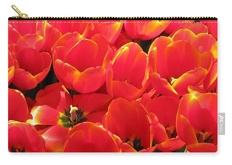 Tulip Carry-all Pouch featuring the photograph Tulips - Field With Love 28 by Pamela Critchlow