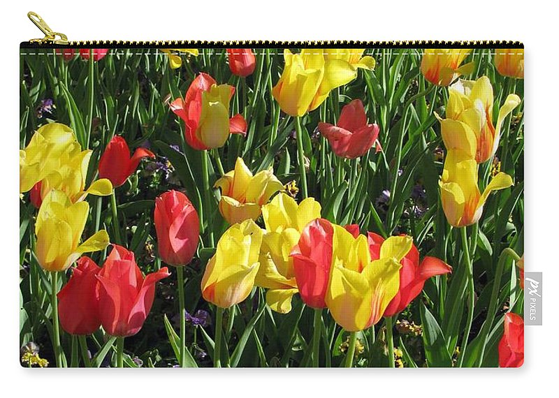 Tulip Carry-all Pouch featuring the photograph Tulips - Field With Love 48 by Pamela Critchlow