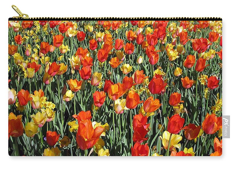 Tulip Carry-all Pouch featuring the photograph Tulips - Field With Love 51 by Pamela Critchlow