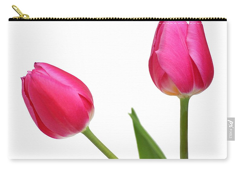 Arrangement Carry-all Pouch featuring the photograph Tulips by TouTouke A Y