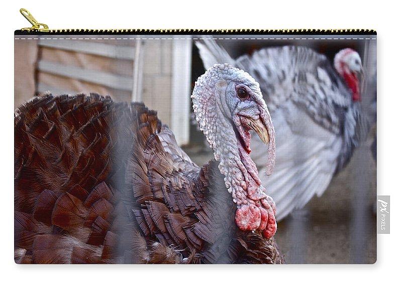 Turkey Carry-all Pouch featuring the photograph Turkey 2 by Carol Tsiatsios