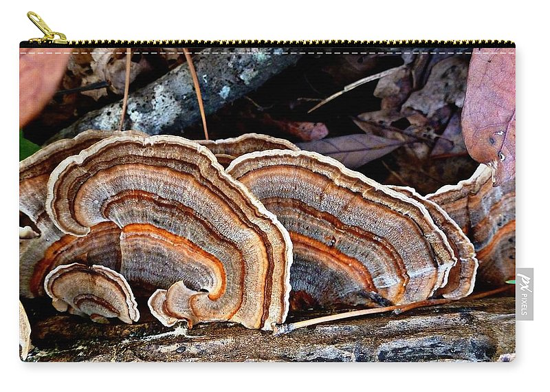 Trametes Versicolor Carry-all Pouch featuring the photograph Turkey Tail Fungi In Autumn by William Tanneberger