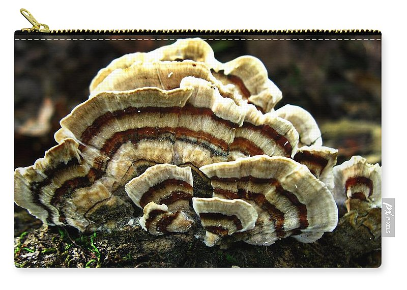 Trametes Versicolor Carry-all Pouch featuring the photograph Turkey Tail Fungi by William Tanneberger