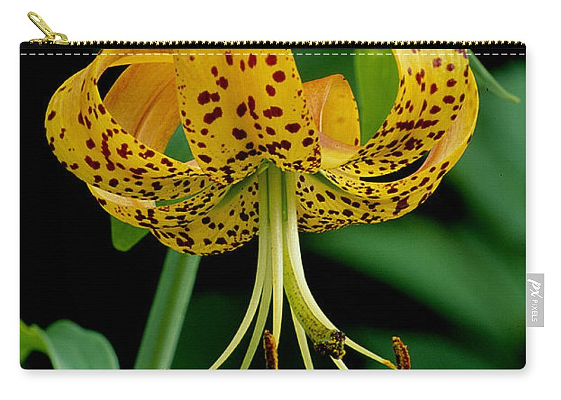 Wildflower Carry-all Pouch featuring the photograph Turk's Cap Lilly by Eric Albright