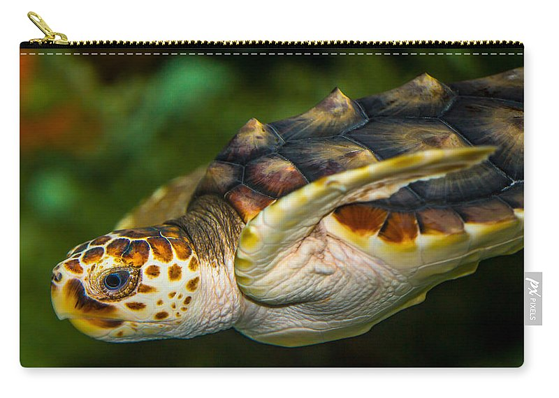 Carry-all Pouch featuring the photograph Turtle by Dennis Goodman