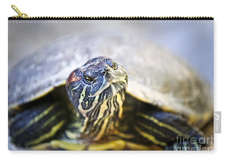 Turtle Carry-all Pouch featuring the photograph Turtle by Elena Elisseeva