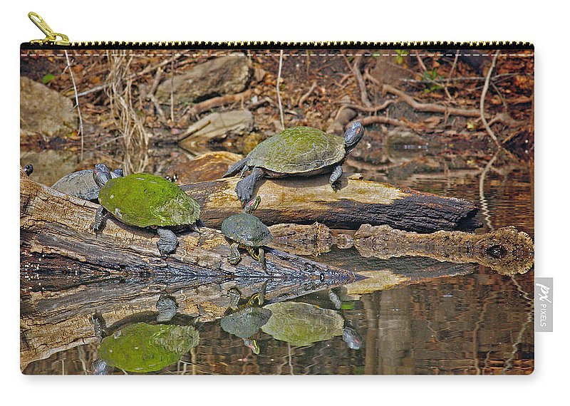 Turtle Trio Carry-all Pouch featuring the photograph Turtle Trio by David Cutts