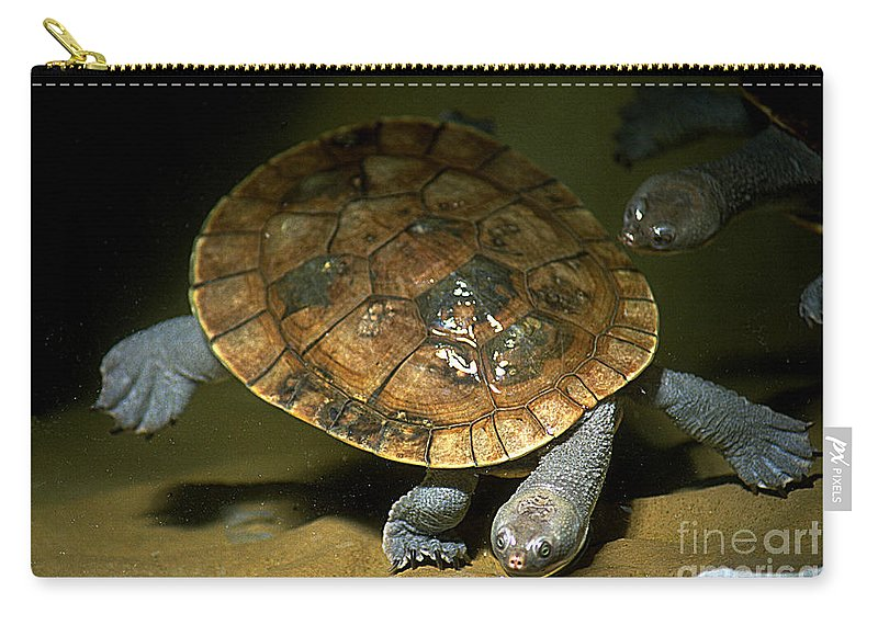 Turtle Carry-all Pouch featuring the photograph Turtles Float by Gary Gingrich Galleries