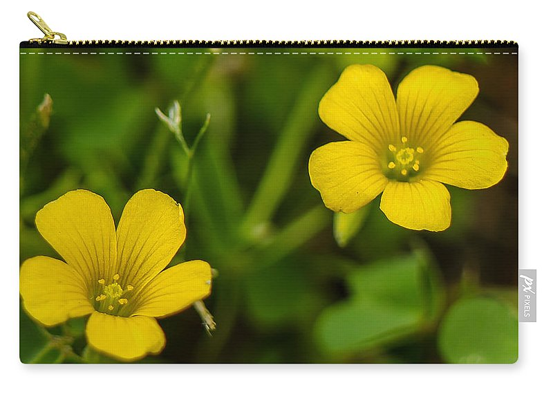 Flower Carry-all Pouch featuring the photograph Twice As Nice by Ken Kobe