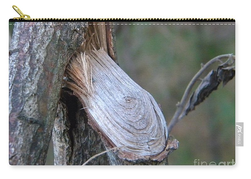 Twig Carry-all Pouch featuring the photograph Twigs by Nathanael Smith