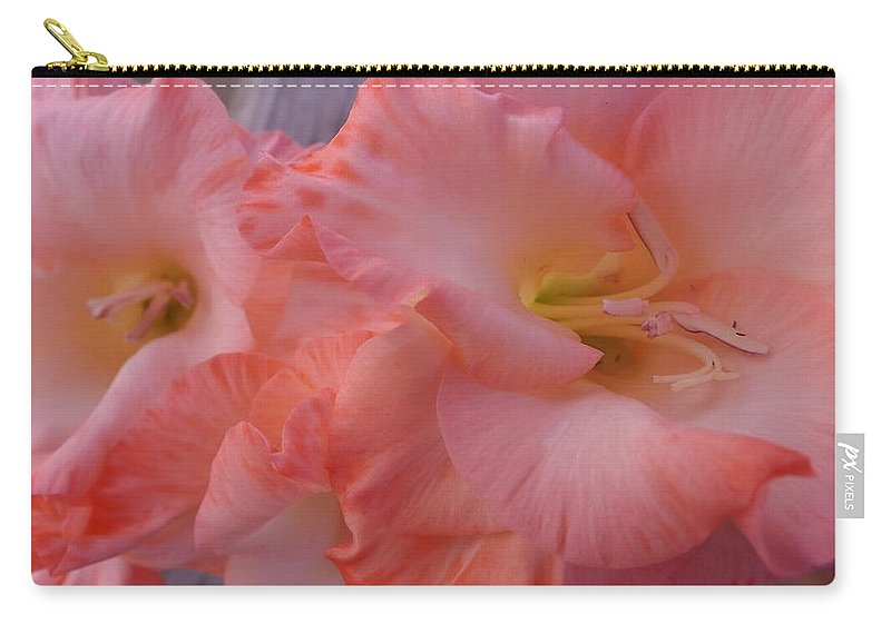 Gladiola Carry-all Pouch featuring the photograph Twin Gladiola Blooms by Jussta Jussta