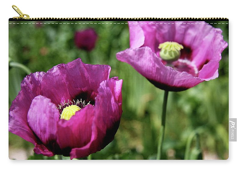 Poppy Carry-all Pouch featuring the photograph Twin Poppies by Christiane Schulze Art And Photography