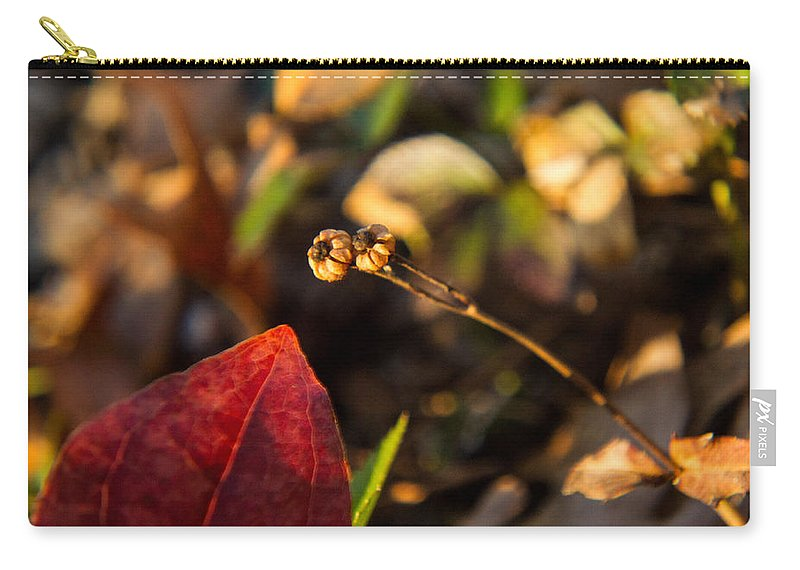 Background Carry-all Pouch featuring the photograph Twin Spotted Wintergreen Pods by Douglas Barnett