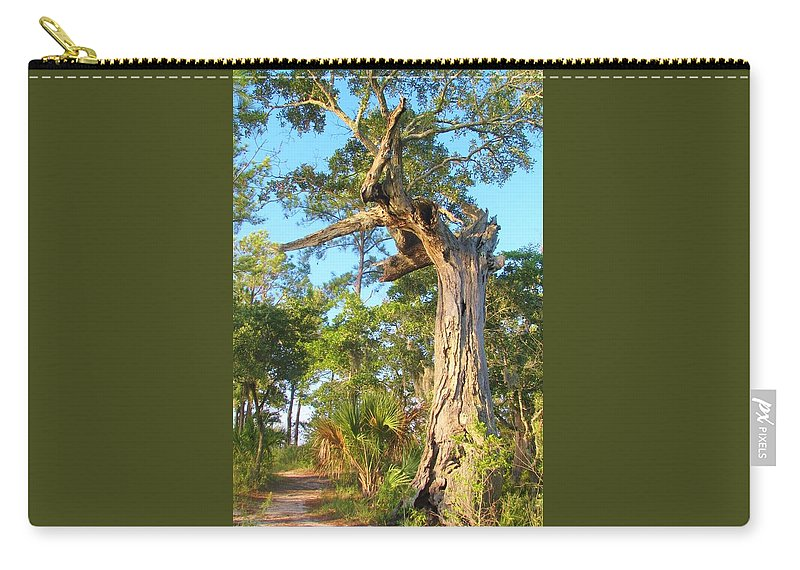Tree Carry-all Pouch featuring the photograph Twirling Tree Path by Wild Haven Photography