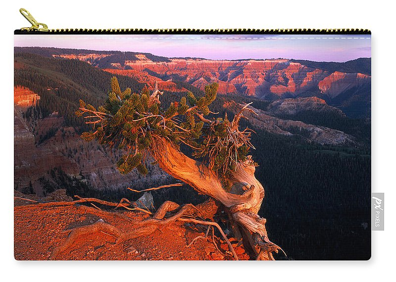 Twisted Forest Carry-all Pouch featuring the photograph Twisted Forest by Leland D Howard