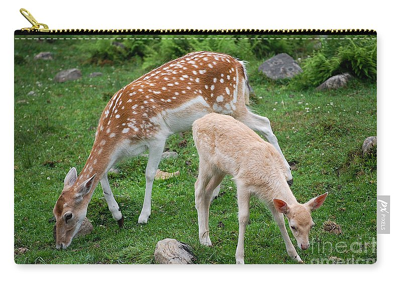 Deer Carry-all Pouch featuring the photograph Two Babes by Bianca Nadeau
