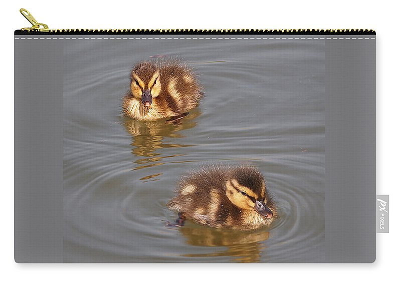 Ducklings Carry-all Pouch featuring the photograph Two Baby Ducklings by Gill Billington