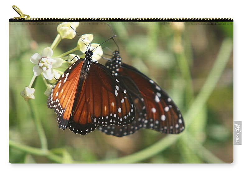 Butterfly Carry-all Pouch featuring the photograph Two Butterflies by Christiane Schulze Art And Photography