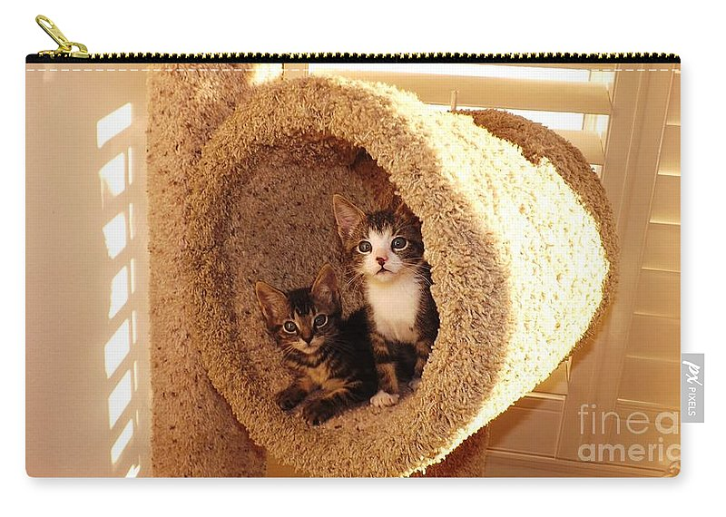 Kittens Carry-all Pouch featuring the photograph Two Cats In A Condo by Jussta Jussta