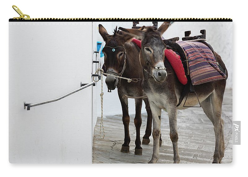 Working Animal Carry-all Pouch featuring the photograph Two Donkeys Tethered In The Street In by Martin Child