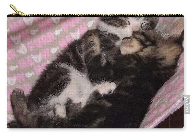 Kittens Carry-all Pouch featuring the photograph Two Kittens Sleeping by Jussta Jussta