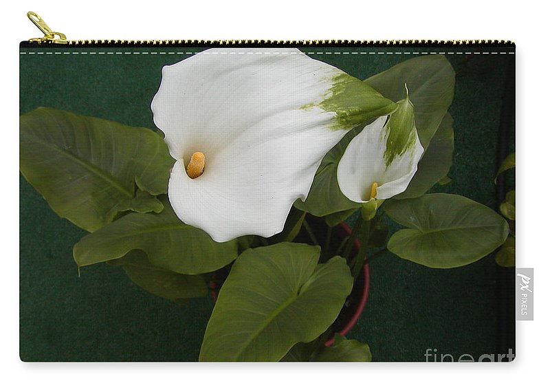 Lily Carry-all Pouch featuring the photograph Two Lovely Lilies by Jussta Jussta