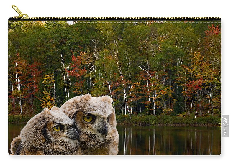 Autumn Carry-all Pouch featuring the photograph Two Owlets At A Lakeshore by Les Palenik