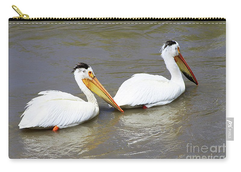 Bird Carry-all Pouch featuring the photograph Two Pelicans by Alyce Taylor