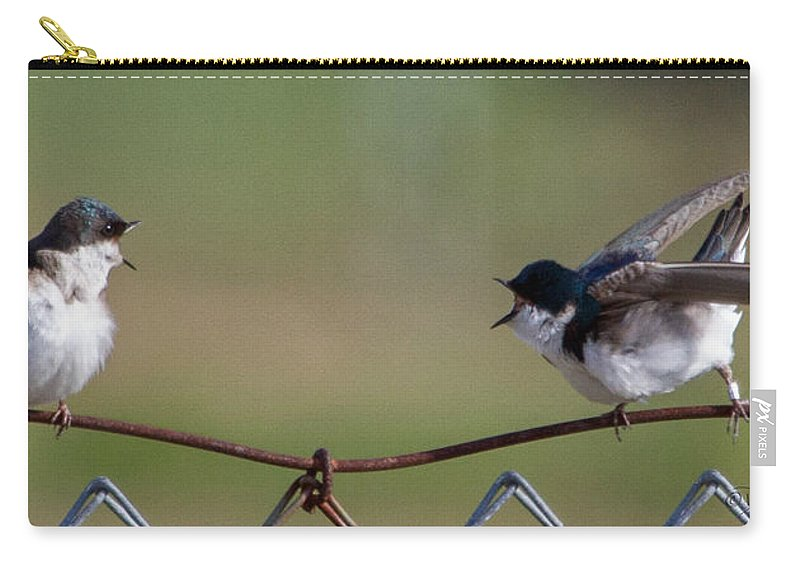 Tree_swallow Carry-all Pouch featuring the photograph Two Swallows by Dee Carpenter