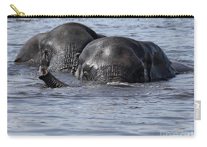 African Elephant Carry-all Pouch featuring the photograph Two Swimming Elephants by Liz Leyden