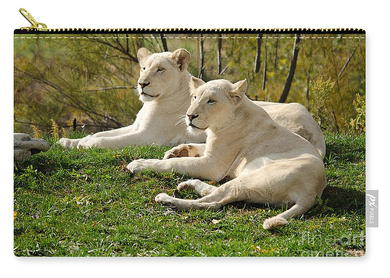 Africa Carry-all Pouch featuring the photograph Two White Lions by Les Palenik