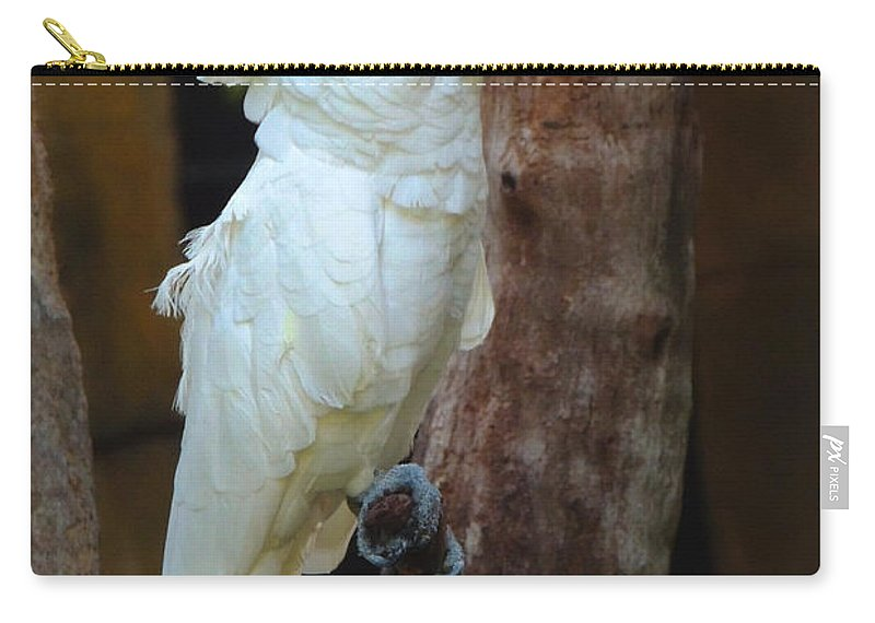 Wildlife Carry-all Pouch featuring the photograph Umbrella Macaw by Paul Smith