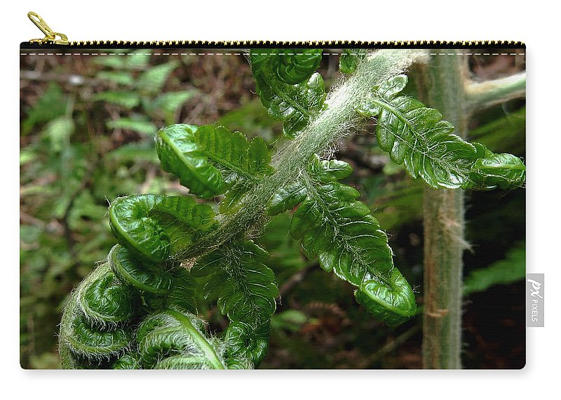 Nature Carry-all Pouch featuring the photograph Uncurling by Pamela Walton