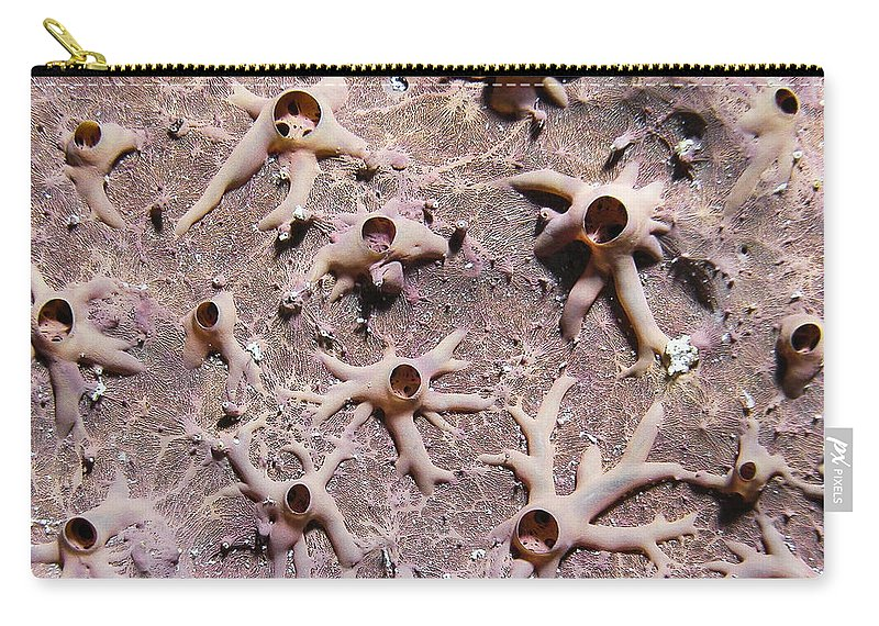 Underwater Carry-all Pouch featuring the photograph Underwater Mystery by Jean Noren