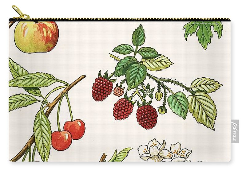 Fruit Carry-all Pouch featuring the painting Unidentified Montage Of Fruit by English School
