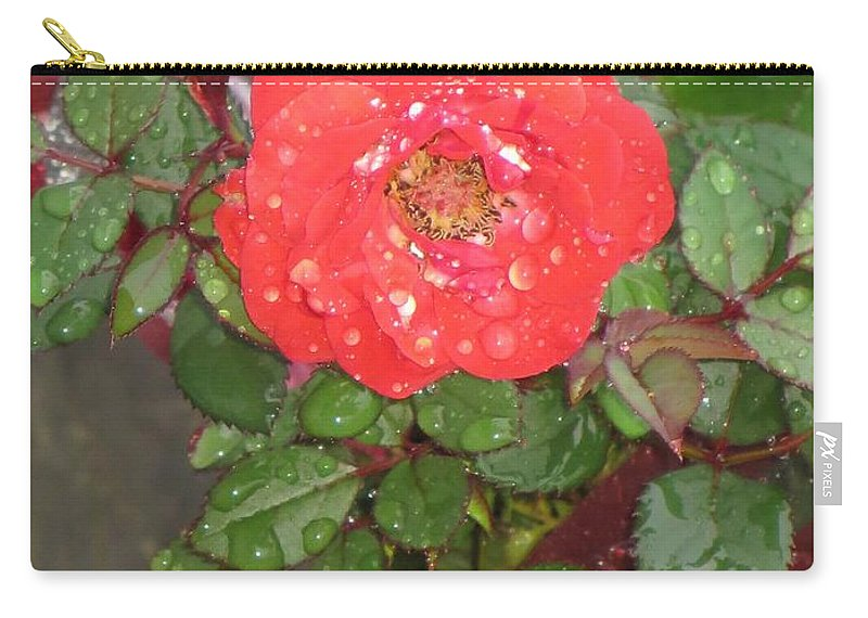 Symbol For Love Carry-all Pouch featuring the photograph Universal Love by Sonali Gangane
