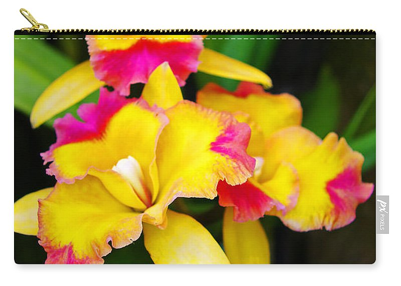 Orchids Carry-all Pouch featuring the photograph unnamed - Orchid by Rich Walter