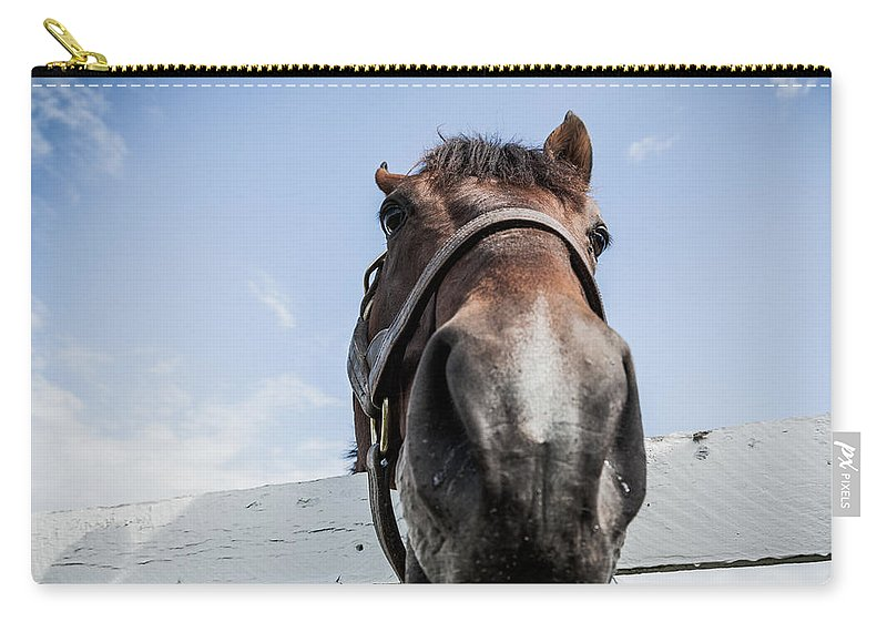 Horse Carry-all Pouch featuring the photograph Up Close by Alexey Stiop