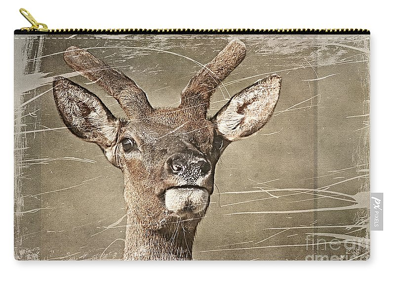 Deer Carry-all Pouch featuring the photograph Up Close And Personal by Teresa Zieba