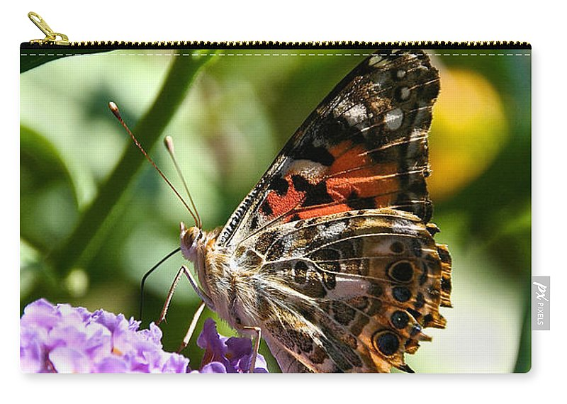 Painted Lady Butterfly Carry-all Pouch featuring the photograph Vanessa Cardui by Susan Herber