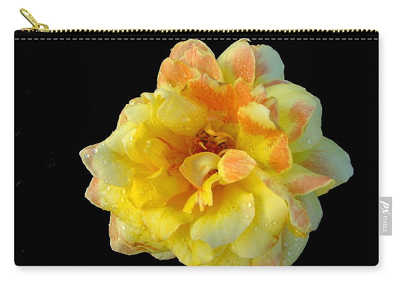 Rose Carry-all Pouch featuring the photograph Variegated Yellow Rose by Joyce Dickens