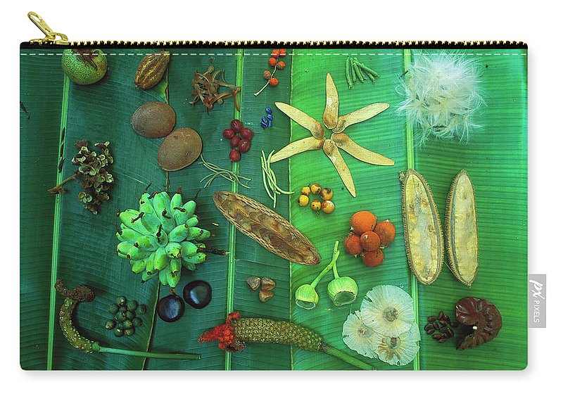 00760014 Carry-all Pouch featuring the photograph Variety Of Seeds And Fruits by Christian Ziegler