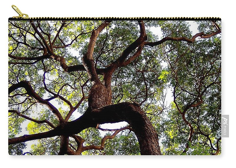 Trees Carry-all Pouch featuring the photograph Veins Of Life by Karen Wiles