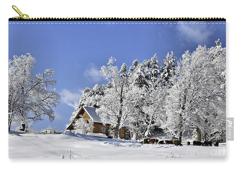 Winter Carry-all Pouch featuring the photograph Vermont Winter Beauty by Deborah Benoit