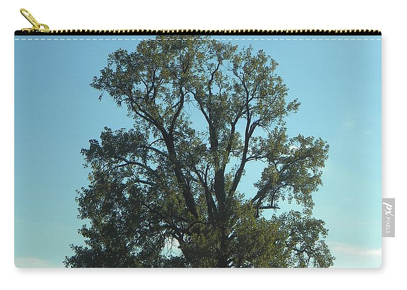 Tree Carry-all Pouch featuring the photograph Vertical Tree by Nathanael Smith