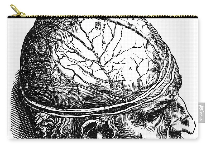 1543 Carry-all Pouch featuring the photograph Vesalius: Brain by Granger