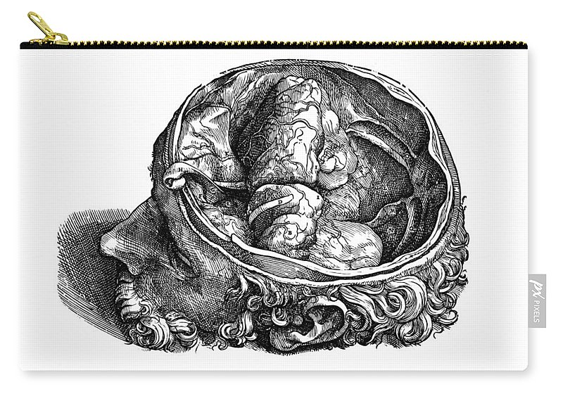 16th Century Carry-all Pouch featuring the photograph Vesalius: Olfactory Organs by Granger