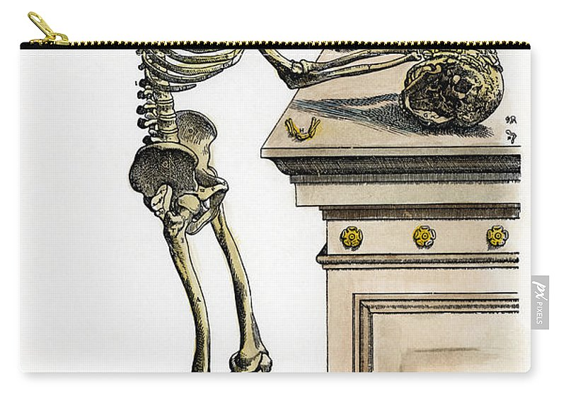 1543 Carry-all Pouch featuring the photograph Vesalius: Skeleton, 1543 by Granger