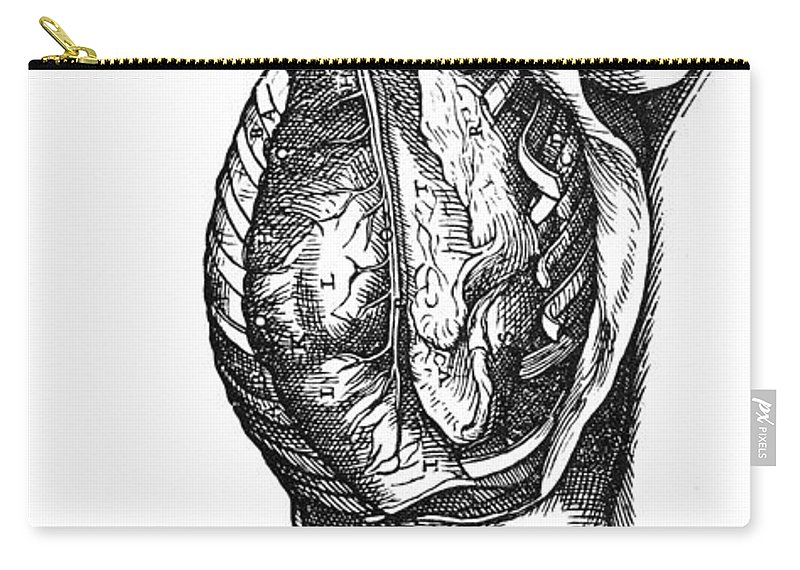 1543 Carry-all Pouch featuring the photograph Vesalius: Thoracic Cavity by Granger