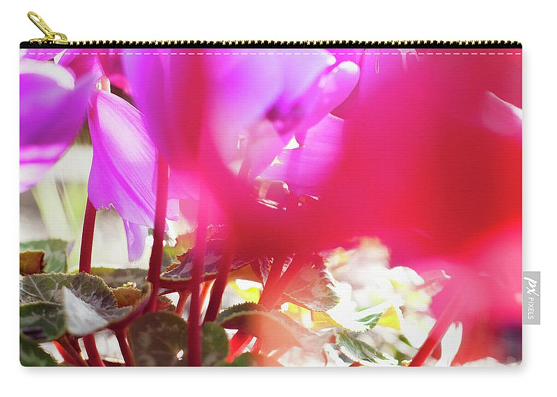 Shadow Carry-all Pouch featuring the photograph Vibrant Magenta Cyclamen In Bloom by Erika Pino